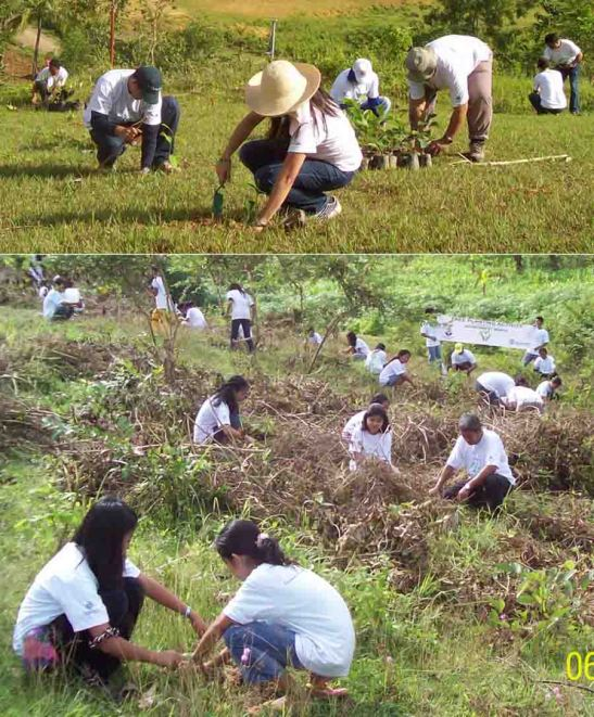 Tree Planting. Company scholars and volunteers plant trees in a buffer near the plant of Taiheiyo Cement Philippines, Inc. in San Fernando, Cebu.