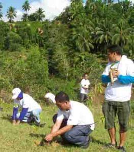 tcpi-%e2%80%a2-tree-planting-3