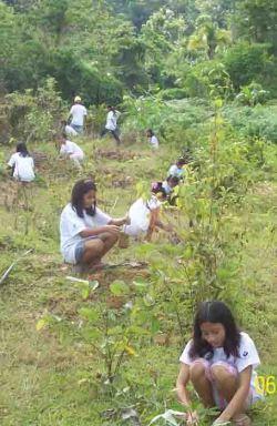 tcpi-%e2%80%a2-tree-planting-4